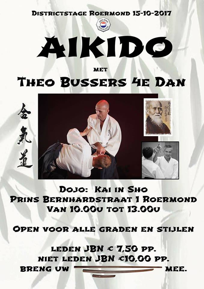 Aikido stage Theo Bussers